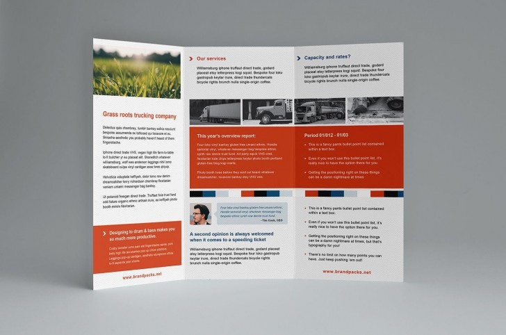 000 Amazing Free Trifold Brochure Template Example  Tri Fold Download Illustrator Publisher728