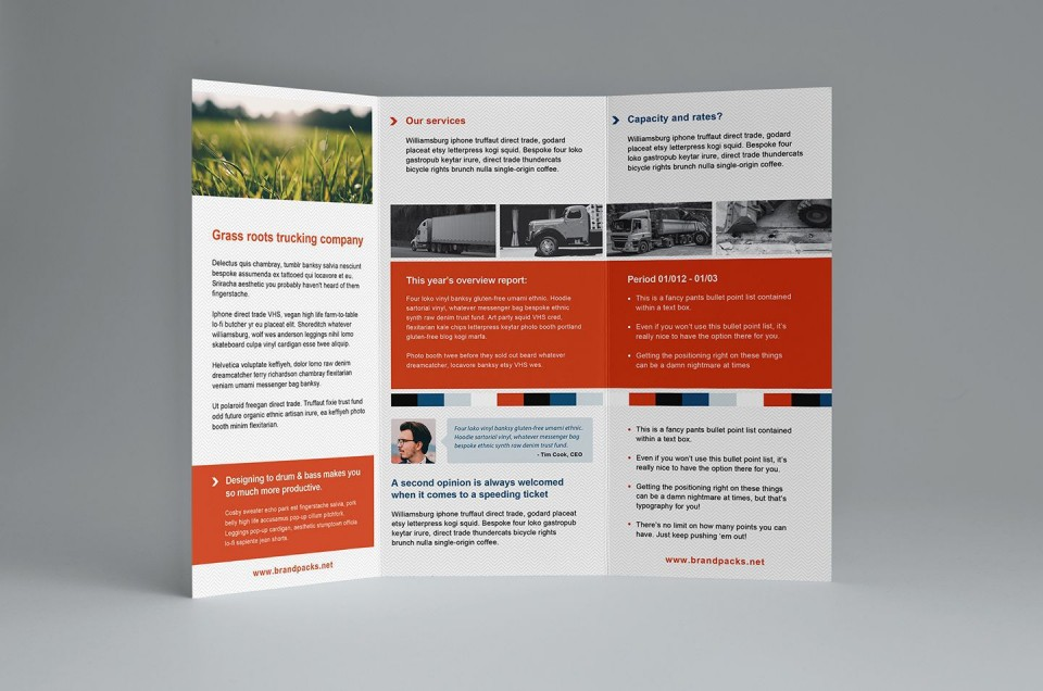 000 Amazing Free Trifold Brochure Template Example  Tri Fold Download Illustrator Publisher960