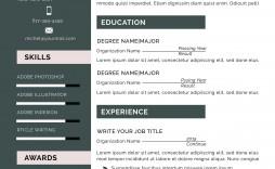 000 Amazing Functional Resume Template Free Image