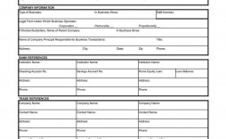 000 Awful Busines Credit Application Form Template Excel High Definition
