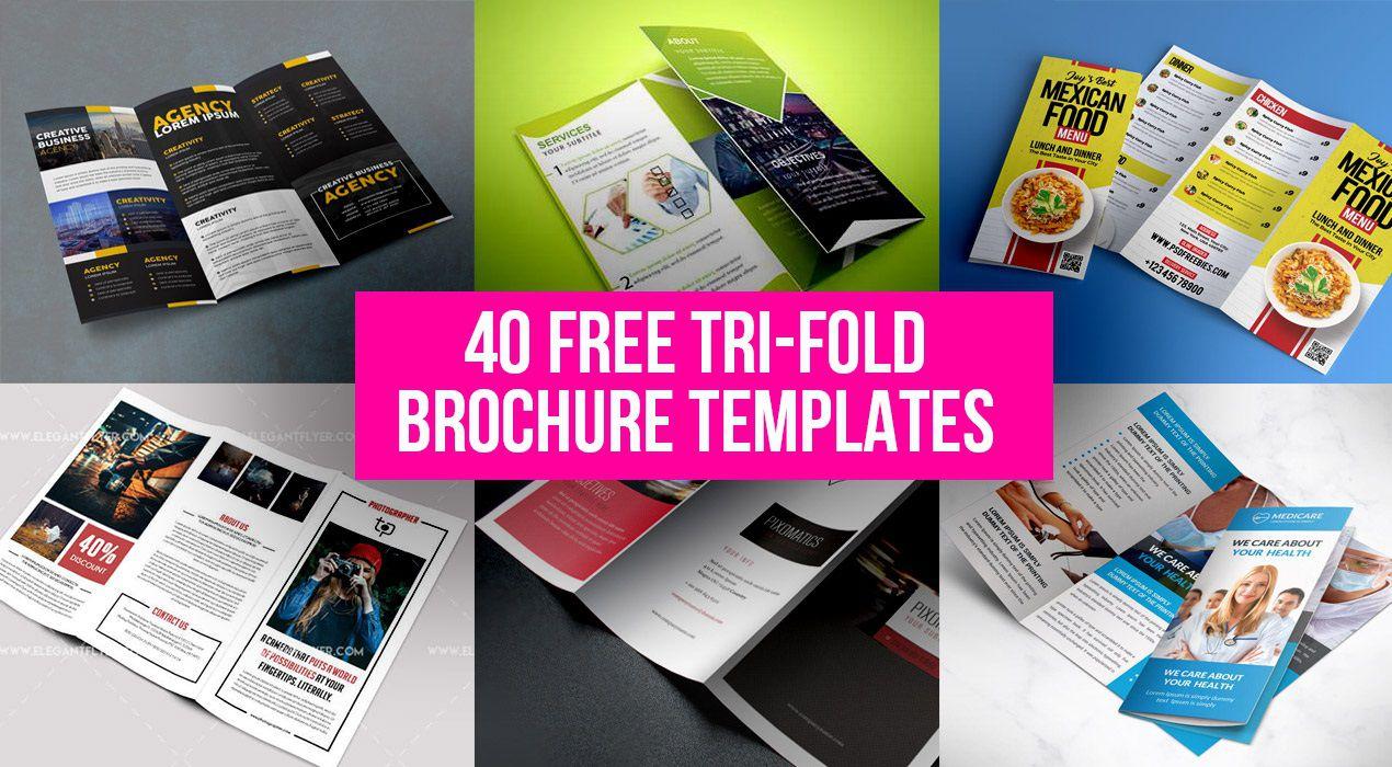 000 Beautiful Free Tri Fold Brochure Template Sample  Photoshop Illustrator Microsoft Word 2010Full