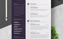 000 Beautiful Professional Resume Template Free Download Word Concept  Cv 2020 Format With Photo