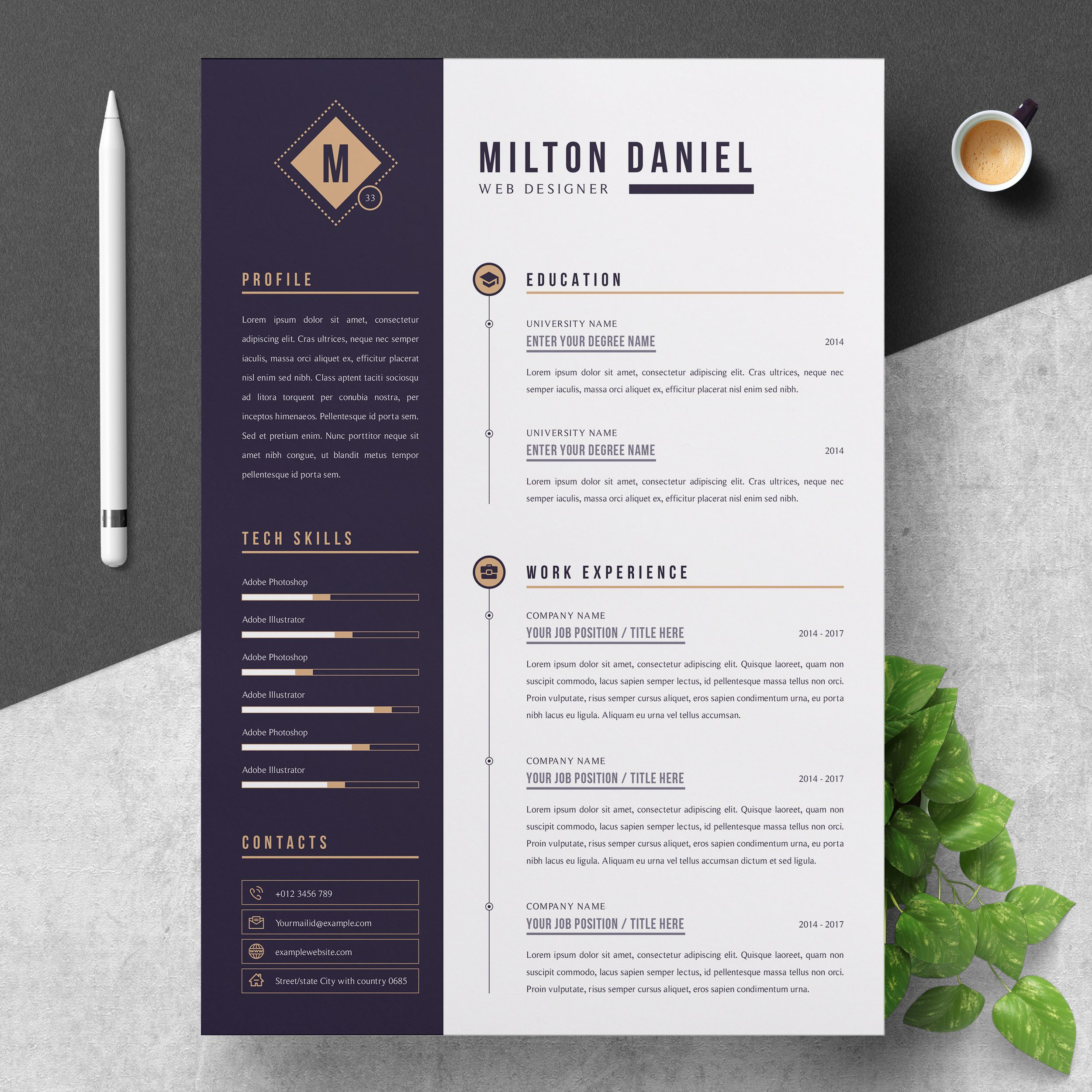 000 Beautiful Professional Resume Template Free Download Word Concept  Cv 2020 Format With PhotoFull