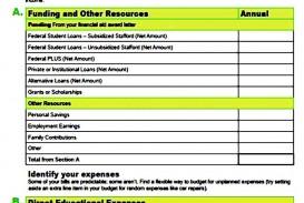 000 Dreaded Line Item Budget Form High Definition  Sample Template Spreadsheet Format