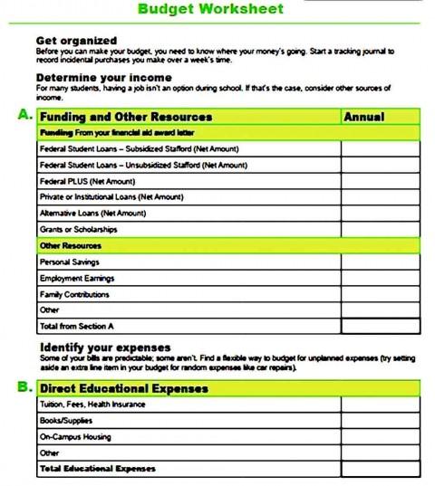 000 Dreaded Line Item Budget Form High Definition  Sample Template Spreadsheet Format480