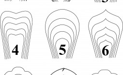 000 Fantastic Downloadable Free Printable Paper Flower Template Picture  Templates