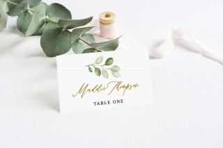000 Fascinating Name Place Card Template Image  Free Word Publisher Wedding320