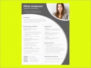 000 Formidable Download Resume Template Word 2007 Inspiration 320