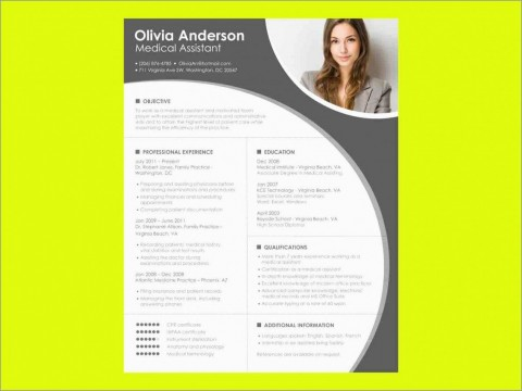 000 Formidable Download Resume Template Word 2007 Inspiration 480