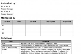 000 Formidable Role And Responsibilitie Template For Team Example  Excel Project