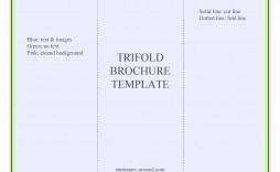 000 Frightening Brochure Template Google Doc Idea  Layout Blank Tri Fold