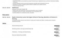 000 Impressive Free Student Nurse Resume Template Idea  Templates