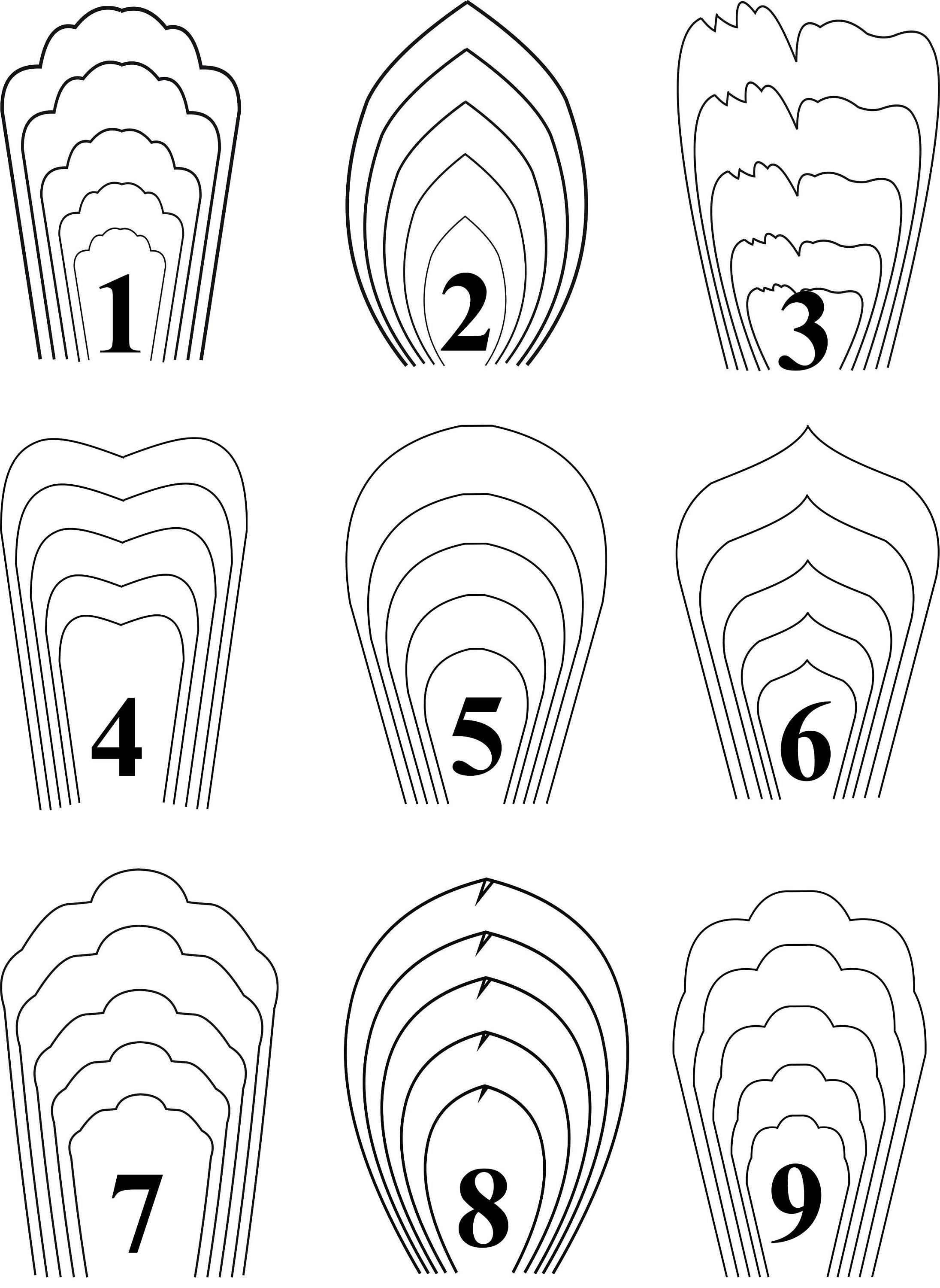 000 Impressive Giant Paper Flower Template Free Download Highest Quality Full