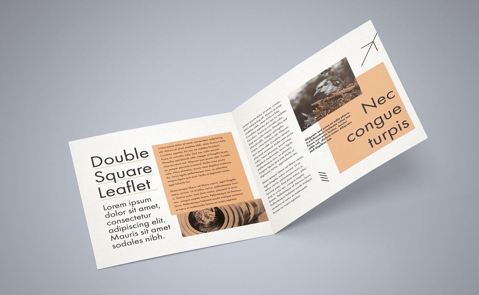 000 Impressive Square Brochure Template Psd Free Download Image Full