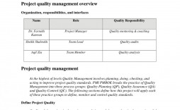 000 Incredible Project Management Plan Template Doc Picture  Example