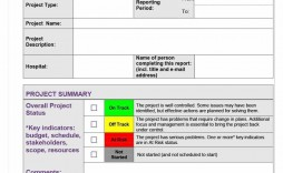 000 Magnificent Project Management Report Template Word High Definition  Free Statu