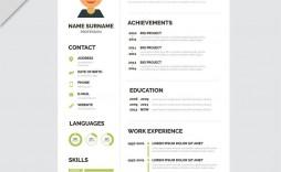000 Magnificent Psd Resume Template Free Download Concept  Graphic Designer Creative Cv