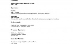 000 Magnificent Resume Template High School Picture  For Student Internship Microsoft Word 2010 Doc