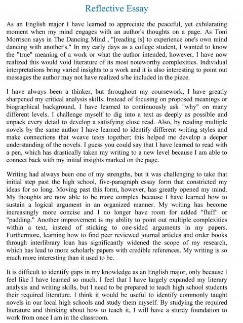 000 Marvelou Essay Paper Highest Clarity  Upsc 2019 In Hindi Pdf Format Cs Past 2018480