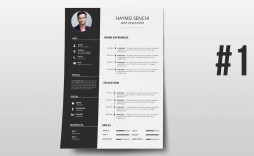 000 Phenomenal How To Create A Resume Template In Photoshop High Resolution