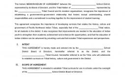 000 Phenomenal Private Placement Memorandum Outline High Resolution  Film Sample Template Canada Word