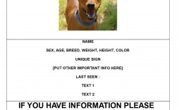 000 Remarkable Missing Pet Poster Template Example  Uk Word