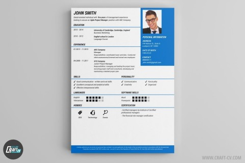 000 Remarkable Professional Cv Template Free Online Concept  Resume480