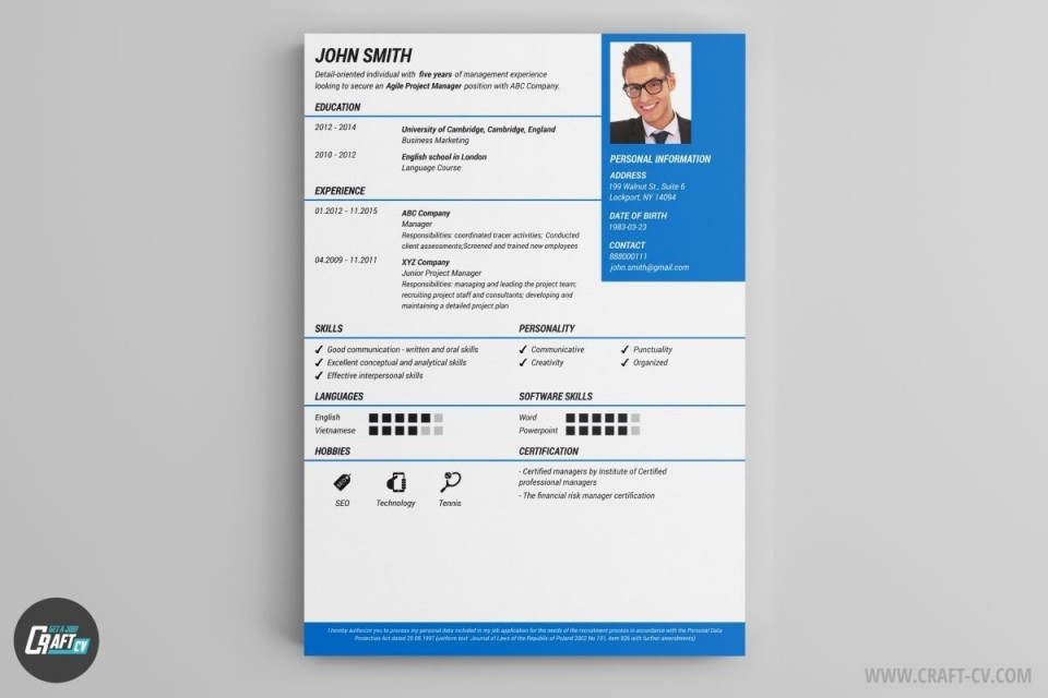 000 Remarkable Professional Cv Template Free Online Concept  Resume960