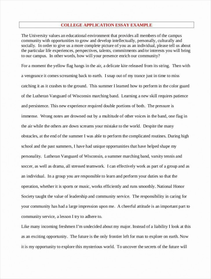 000 Shocking College Application Essay Outline Example Highest Clarity  Admission Format Heading Narrative Template728