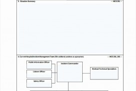 000 Shocking Incident Action Plan Template High Definition  Fire Example Format Form 201
