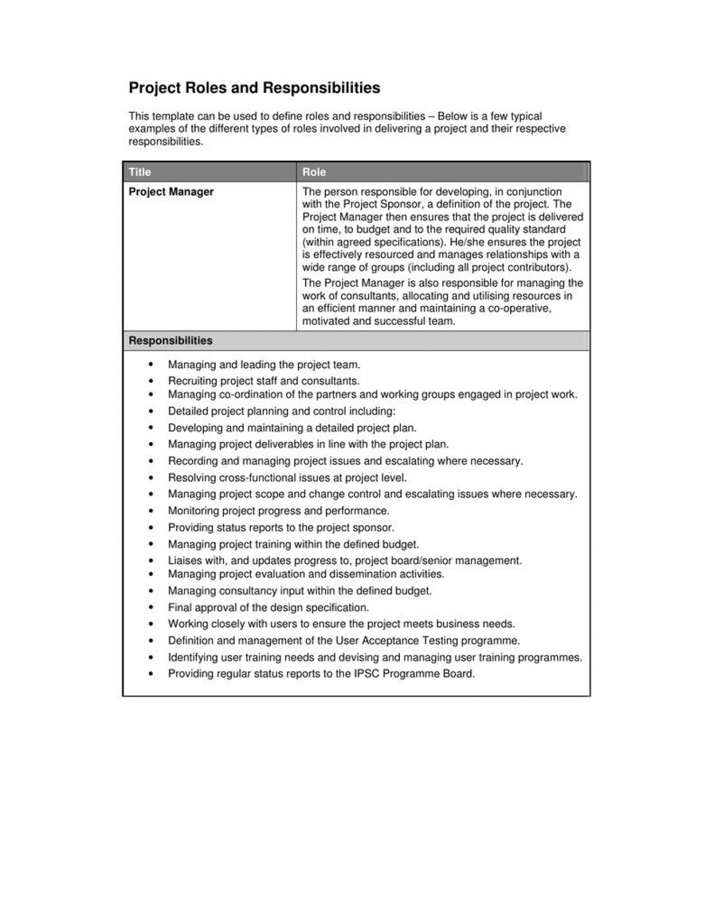 000 Shocking Role And Responsibilitie Template Idea  Project Management Word Team Excel1400