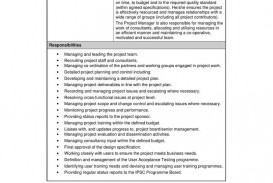 000 Shocking Role And Responsibilitie Template Idea  Project Management Word Team Excel