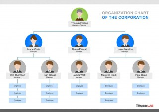 000 Singular Organizational Chart Template Word Concept  Simple Free Download 2013 2010320