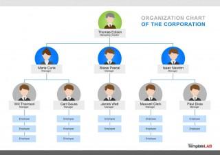 000 Singular Organizational Chart Template Word Concept  2013 2010 2007320