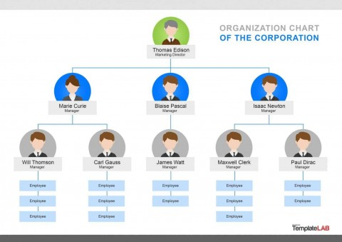 000 Singular Organizational Chart Template Word Concept  Simple Free Download 2013 2010480