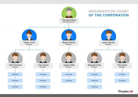 000 Singular Organizational Chart Template Word Concept  2013 2010 2007480