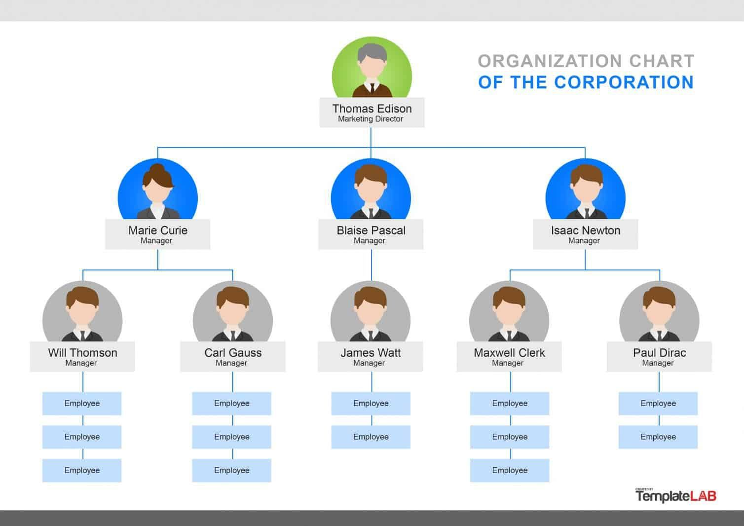 000 Singular Organizational Chart Template Word Concept  2010 2007 Free DownloadFull