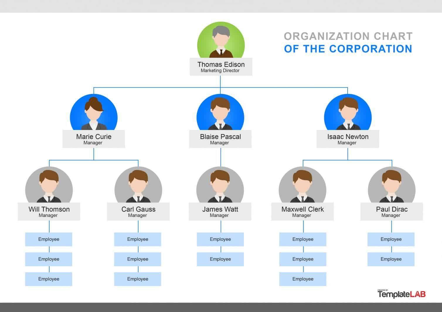 000 Singular Organizational Chart Template Word Concept  2013 2010 2007Full