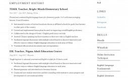 000 Singular Resume Example For Teaching Image  Sample Position In College Teacher School Principal India