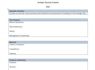 000 Singular Strategic Busines Plan Template High Resolution  Development Word Sample320