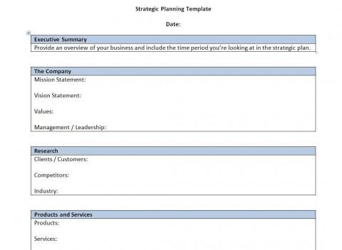 000 Singular Strategic Busines Plan Template High Resolution  Development Word Sample480