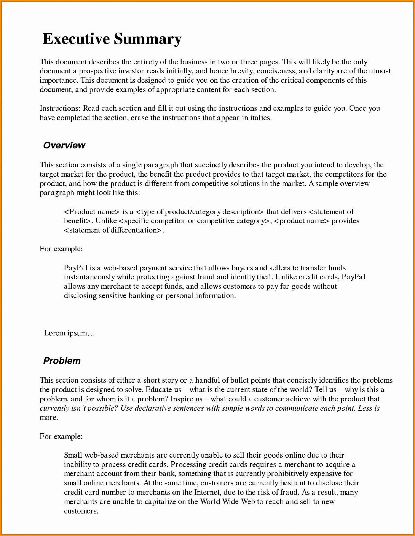 000 Stirring Executive Summary Template Word Free Sample 1920