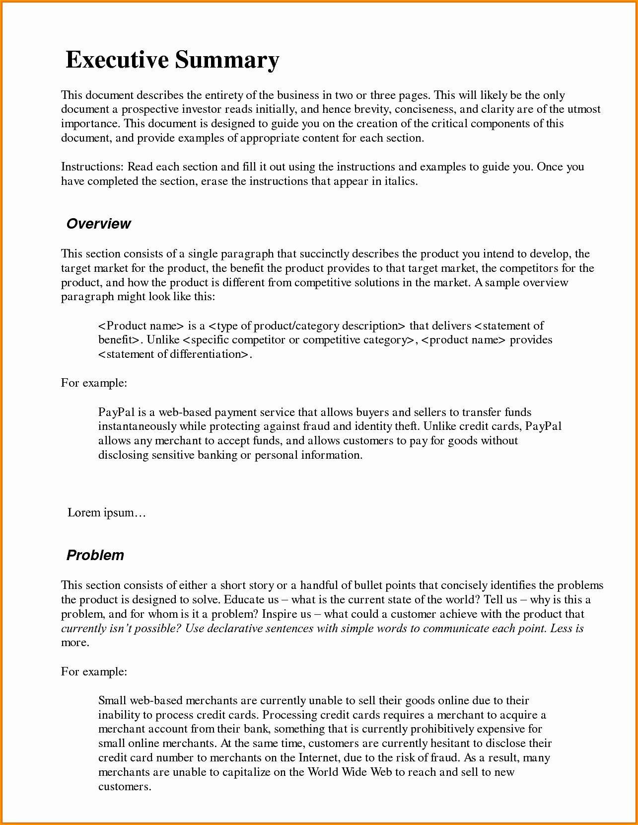 000 Stirring Executive Summary Template Word Free Sample Full