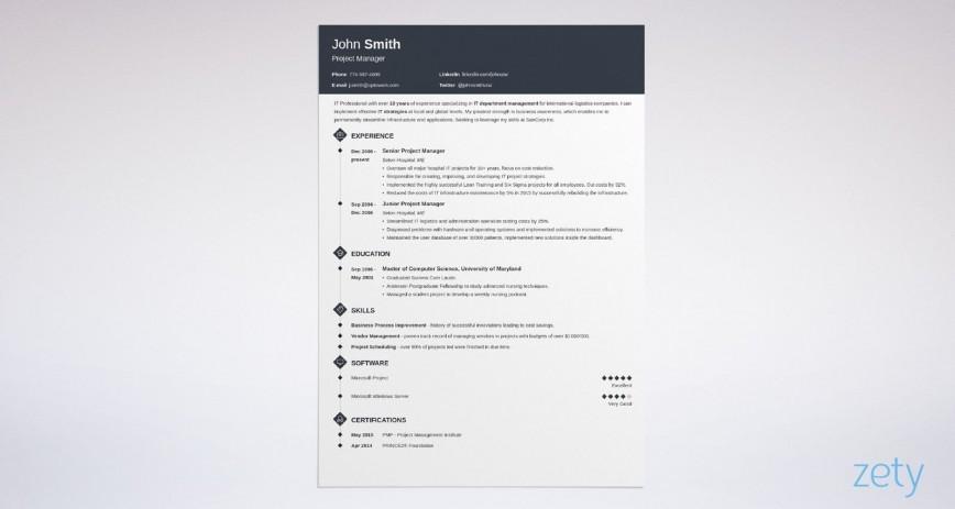 Best Professional Resume Templates Addictionary