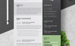 000 Stunning Creative Resume Template Free Microsoft Word Idea  Download For Fresher