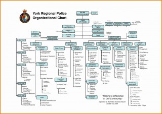 000 Stunning Microsoft Org Chart Template Inspiration  Word Organizational Free320