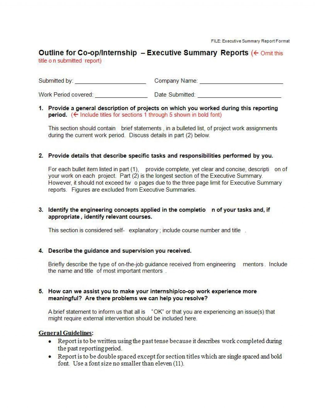 000 Stupendou Executive Summary Template Doc High Def  Document Example GoogleLarge