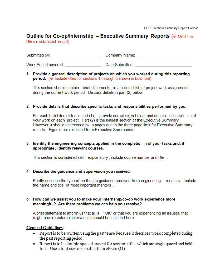 000 Stupendou Executive Summary Template Doc High Def  Document Example GoogleFull