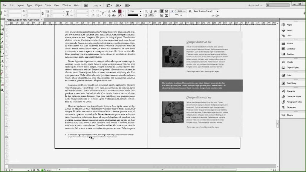 000 Surprising Indesign Book Layout Template Inspiration  Free DownloadLarge