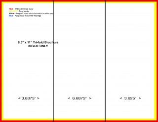 000 Surprising M Word Tri Fold Brochure Template Inspiration  Microsoft Free Download320